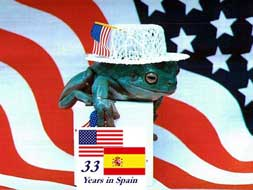 American Flag in Spain (image hosted by surinenglish.com)
