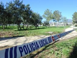 Evidence of poisonous mushrooms in Parque de Los Tres Jardines is inconclusive
