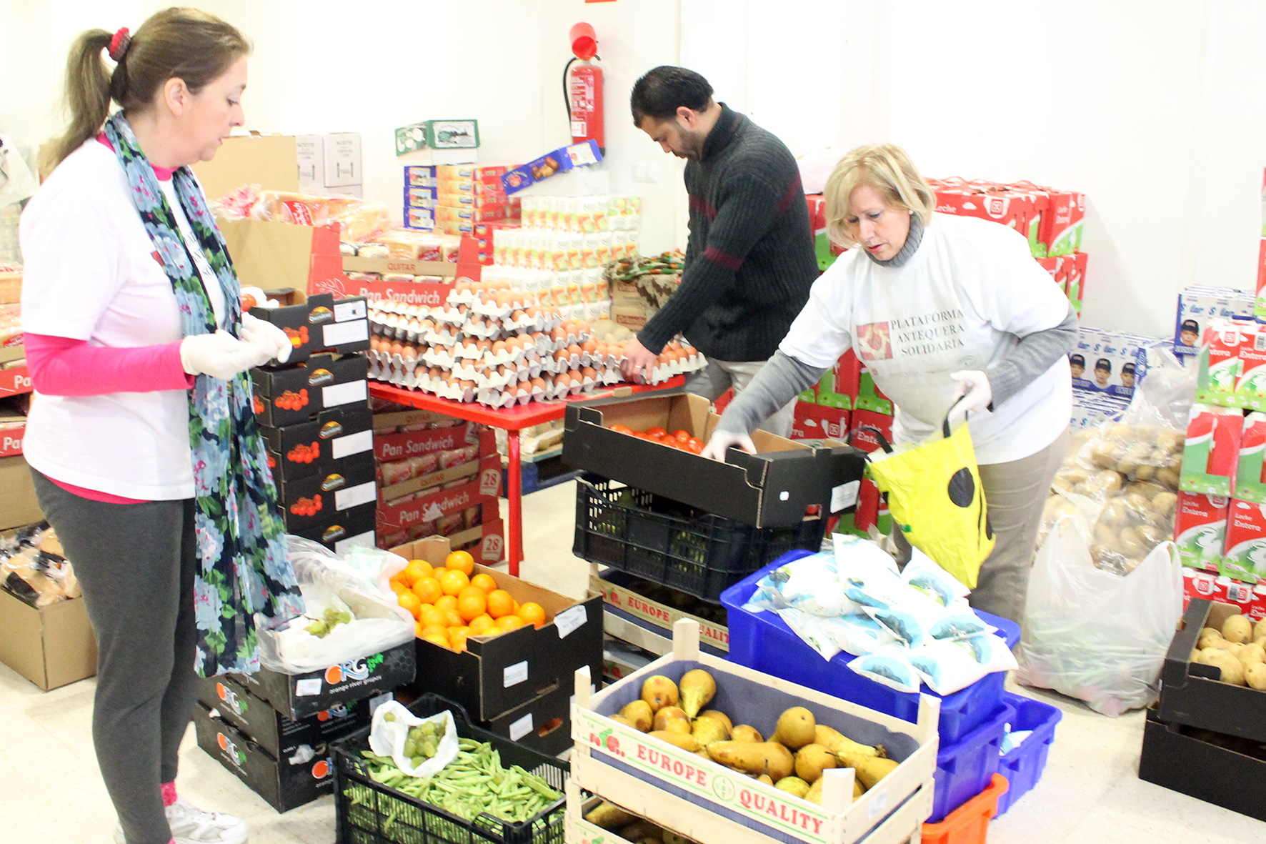 Food banks open around the province to cope with demand