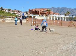 Pet owners satisfied as Fuengirola opens its first dog-friendly beach
