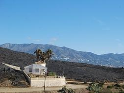 Authorities suspect Mijas fire was started to break into and loot evacuated homes