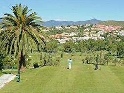 SUR organises a tournament at three of the best courses