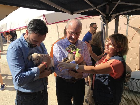 Mayor attends fundraising event for the sociedad for Protectora de animales malaga ciudad jardin