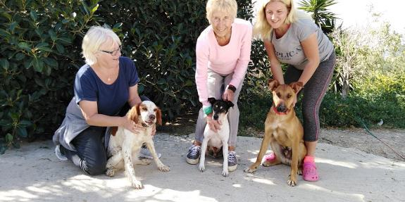 SOS Animals to close after 22 years of caring for abandoned dogs
